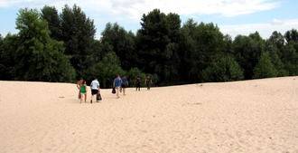 Лес.Песок.Лес