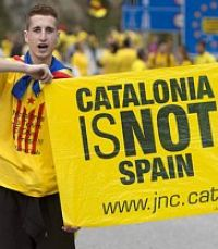 Кастильский бык и каталонский ослик