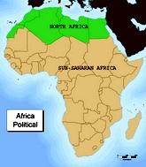 Африка. Эхо арабской весны