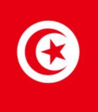 Тунис: январь, месяц восстаний