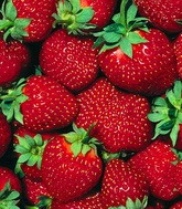 Strawberry fields для «middle class»