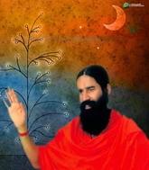 «Революционная йога», индийское казачество